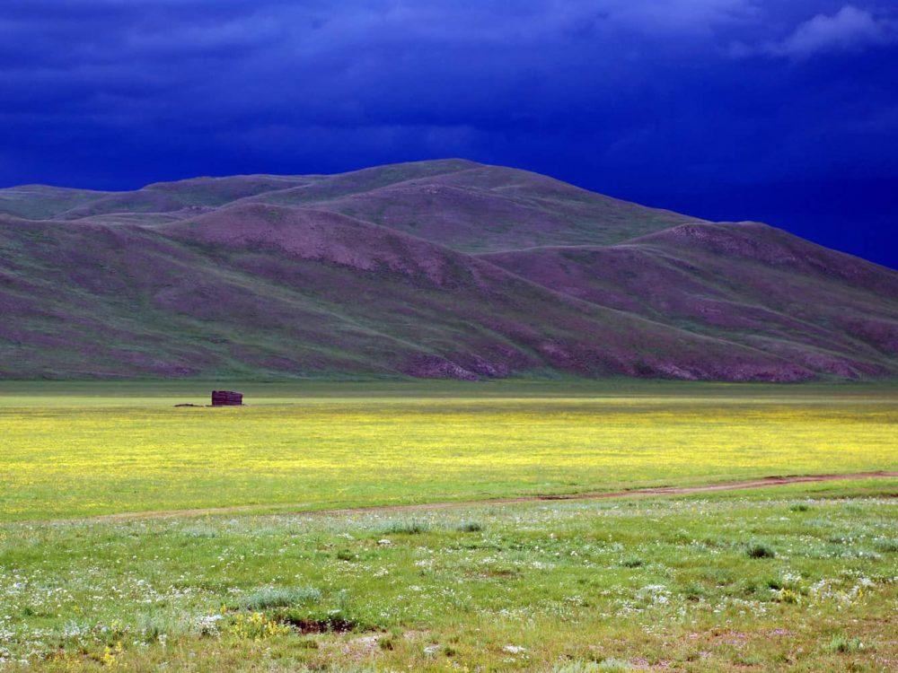 Mongolia & Russia